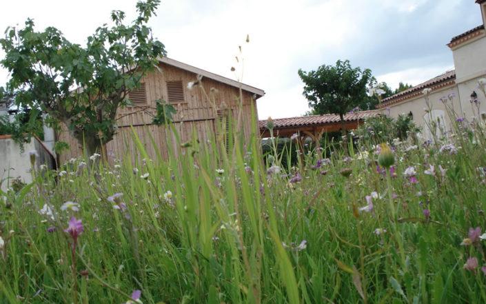 Végétalisation : gazons, prairies fleuries