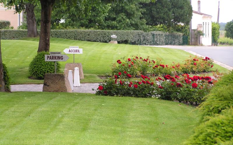 Paysagiste Bordeaux Arcachon : gazons, prairies fleuries