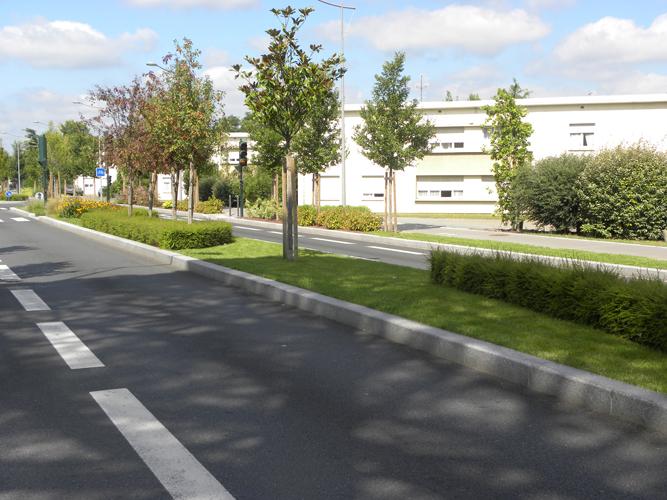Paysagiste Bordeaux Arcachon : voiries et réseaux